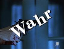 Der Revolver (Wahr)