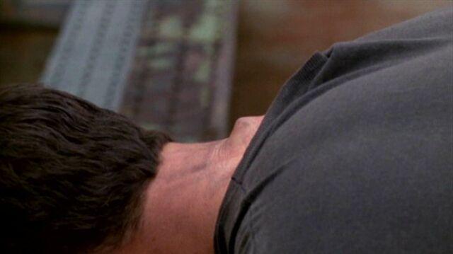 File:Knowle Rohrer's neck (side).jpg