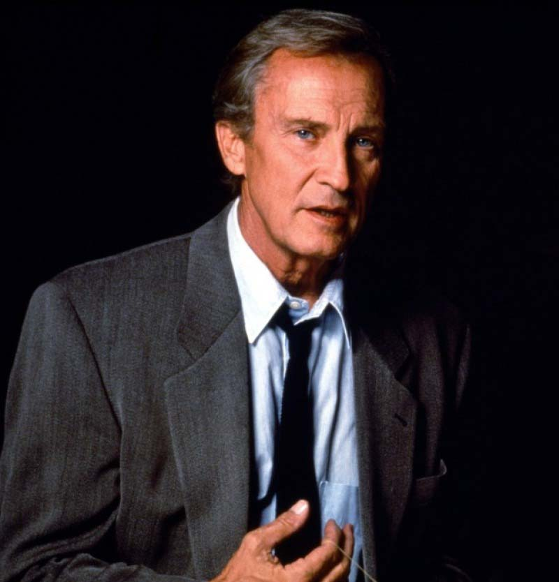 Image result for roy thinnes