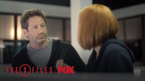 ALERT What Do You Want To Believe? Season 11 THE X-FILES