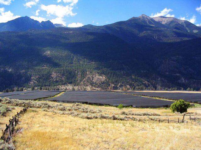 File:Chai Na Ta Ginseng Farms British Columbia Herrenvolk Filming location.jpg