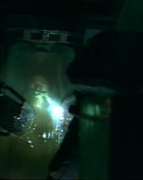 File:Mulder flashlight on occupied cyrochamber.jpg