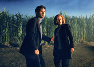 Cornfield Texas Mulder Scully Fight the Future