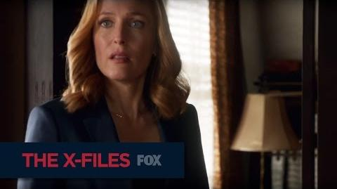 """THE X-FILES What Happened Here? from """"My Struggle II"""""""