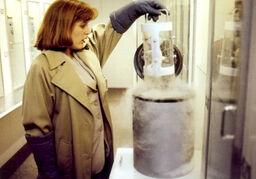 Dana Scully Erlenmeyer Flask Alien Fetus