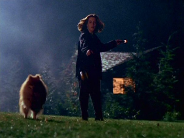 File:Queequeg runs from Dana Scully.jpg