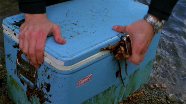 File:Plastic water cooler.jpg