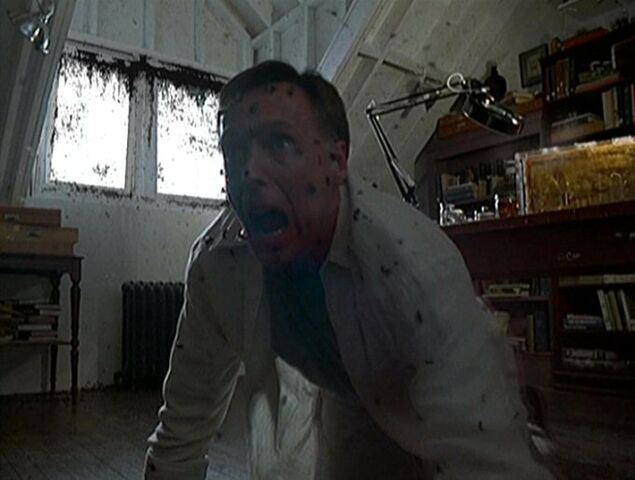 File:Doctor Valedespino attacked by bees.jpg
