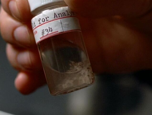 File:Bee venom sacs and stingers.jpg