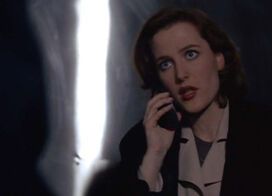Telephone Scully