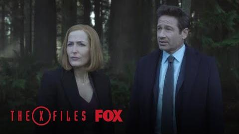 Mulder & Scully Investigate The Playground Season 11 Ep. 8 THE X-FILES
