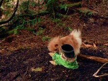 Queequeg finds a boot