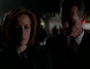 DoggettComfortsScully