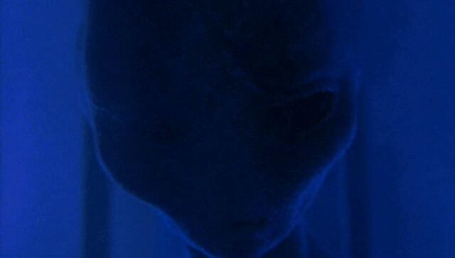 File:Grey alien.JPG