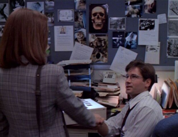 File:Dana Scully meets Fox Mulder First time.jpg