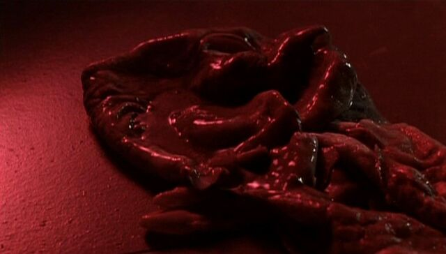 File:Long-clawed alien's skin.jpg