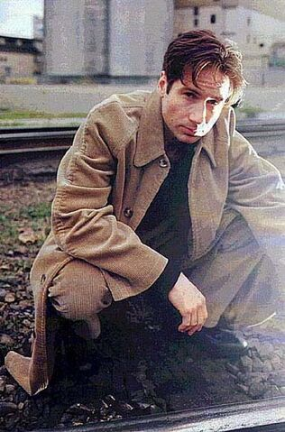 File:Duchovny 27.jpg