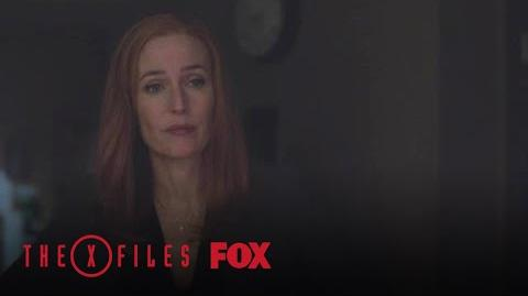 A Dark Figure Is Seen Throughout Scully's Home Season 11 Ep