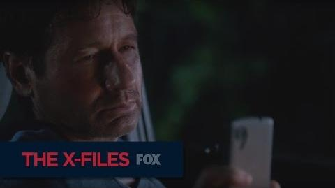"""THE X-FILES Welcome To South Carolina from """"My Struggle II"""""""