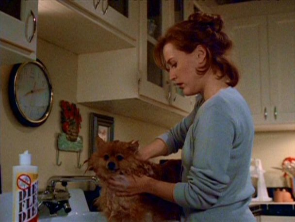 File:Queequeg is bathed by Dana Scully.jpg