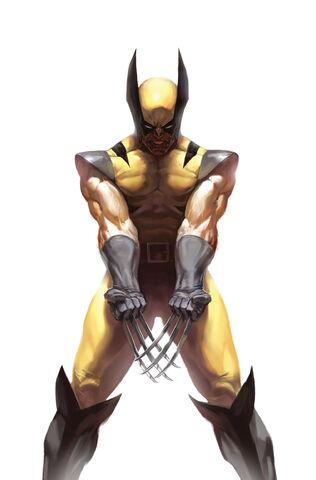 Soubor:Wolverine Vol 3 73 Variant Frame Textless.jpg