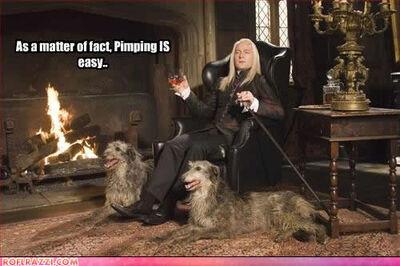 Lucius is British