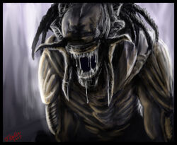 Predalien AVP by Destinyfall