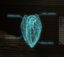 Alien Grenades