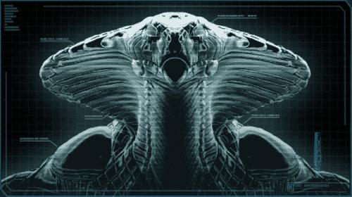 Xcom Chryssalid Viper Autopsy   XCOM W...