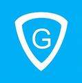 GT1 G