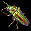 Cetecegem Beetle icon.png