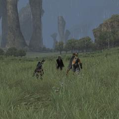 Rain on Bionis' Leg