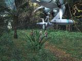 Pod Landing Site