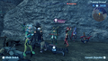 XC2-Floren Beguiling Charms 11