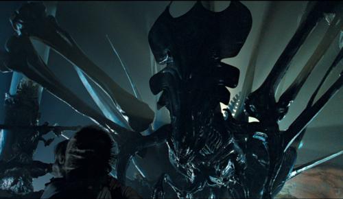 Acheron Queen | Xenomorph Species Wiki | FANDOM powered by ...