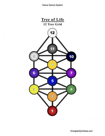 Tree Of Life Xen Qabbalah Wiki Fandom The first universally acknowledged text about the tree of life (sefer yetzirah), was written. tree of life xen qabbalah wiki fandom