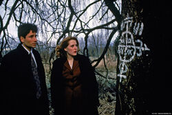 Mystère Vaudou Arbre symbole Mulder Scully