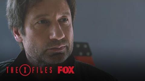 Scully & Mulder's Work Is In Danger Season 10 THE X-FILES