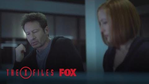 Mulder Gets A Weird Fish Season 11 Ep