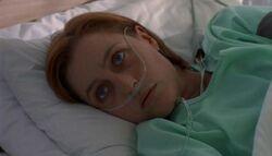 Scully Hôpital Trinité Voie de la vértié