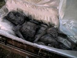 Ray Soames Cercueil Mutation