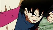 Dragon Ball Super Episode 113 0387