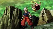 Dragon Ball Super Episode 113 0794