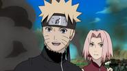 Naruto37709529