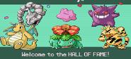 Pokemonemerald11 (2)