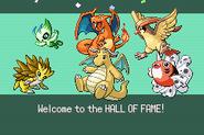 Pokemonemerald11 (23)