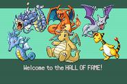Pokemonemerald11 (22)