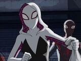 Gwen Stacy(Spider-Gwen)