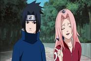 Naruto Shippudden 181 (336)