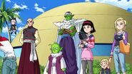 Dragonball Super Tournament (19)